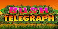 Bush Telegraph Spielautomat