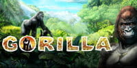 Gorilla Spielautomat