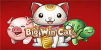 Big Win Cat Spielautomat